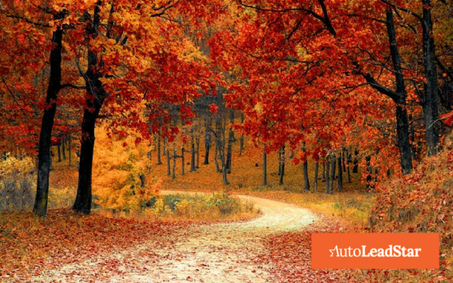conversion optimization in fall